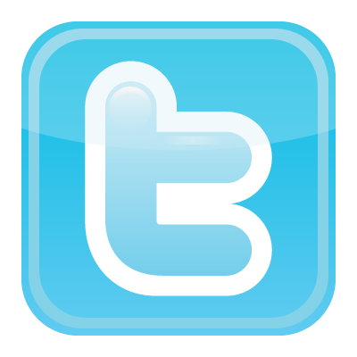 Twitter icon vector 400x400